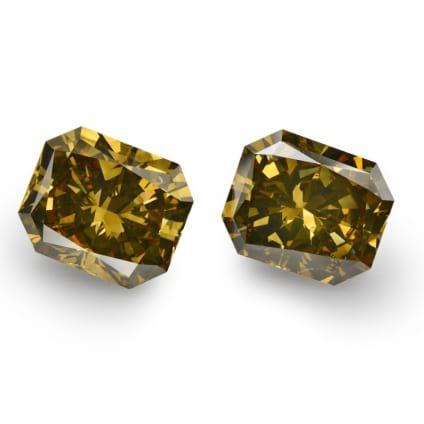 Fancy Dark Brown Greenish Yellow 1482384
