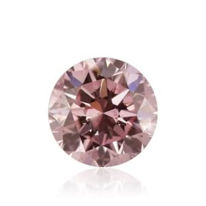 Fancy Orangy Pink 1909734