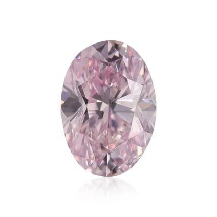 Fancy Purple Pink 1166310